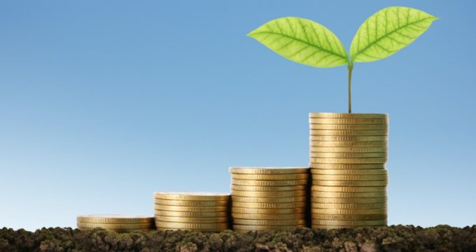 Money and plant photo | Nursing Home Information