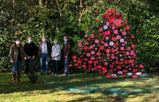 Residents and staff craft poppy cascade to mark remembrance sunday