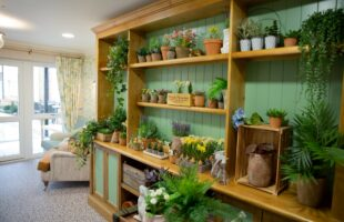care home room design | Care Home Agency Advice